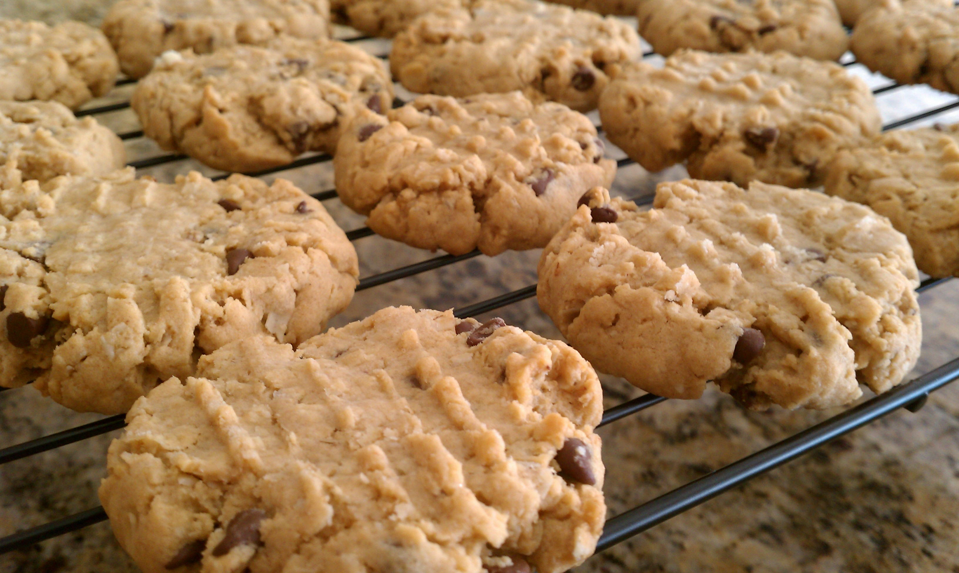 Peanut Butter Chocolate Oatmeal Cookies Recipe — Dishmaps